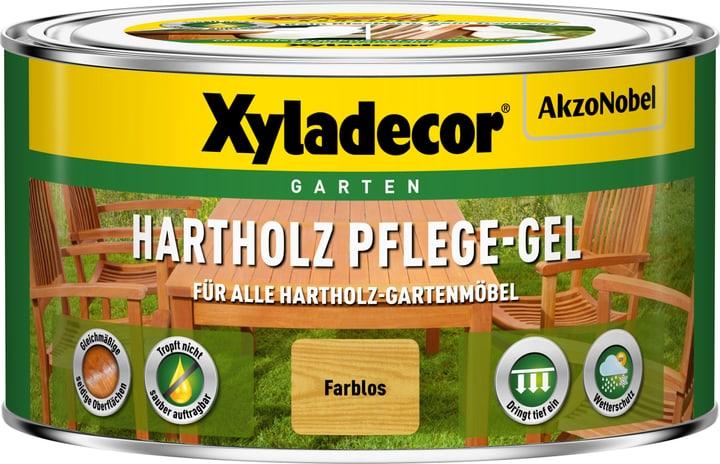 Gelo di cura legno duro 500 ml XYLADECOR 661778800000 N. figura 1