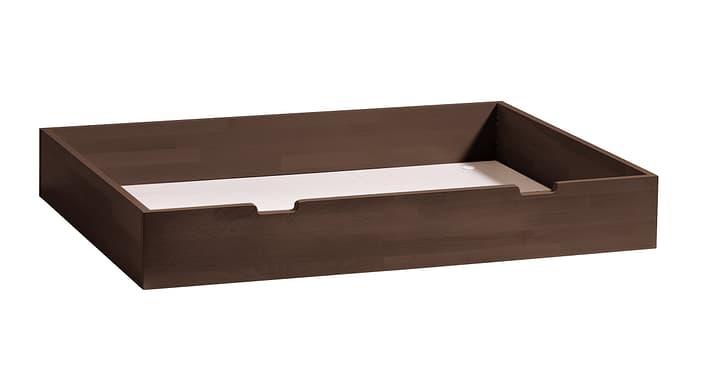 CONTI Tiroir de rangement HASENA 403178785203 Dimensions L: 120.0 cm x P: 89.0 cm x H: 18.0 cm Couleur Hêtre couleur chocolat Photo no. 1