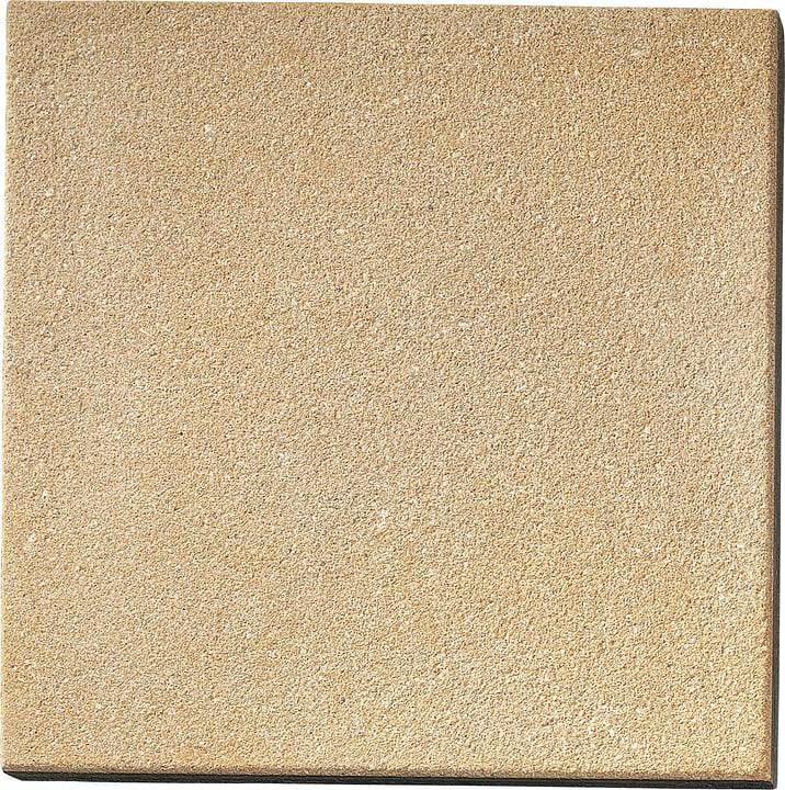 Lastra pedonabile sabbiata ocra 50x50cm 647501900000 Colore Ocra Taglio L: 50.0 cm x L: 50.0 cm x A: 4.0 cm N. figura 1