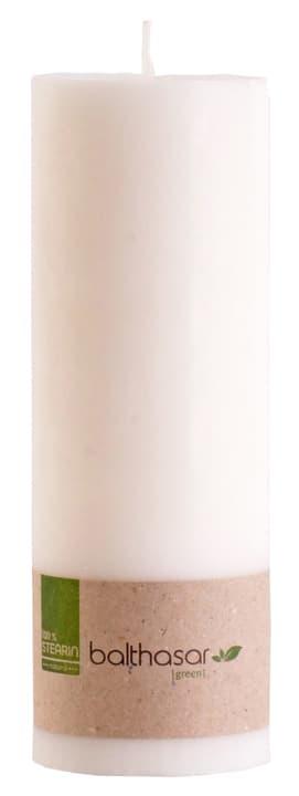 GREEN Bougie cylindrique 440664302010 Couleur Blanc Dimensions L: 20.0 cm x P:  x H:  Photo no. 1