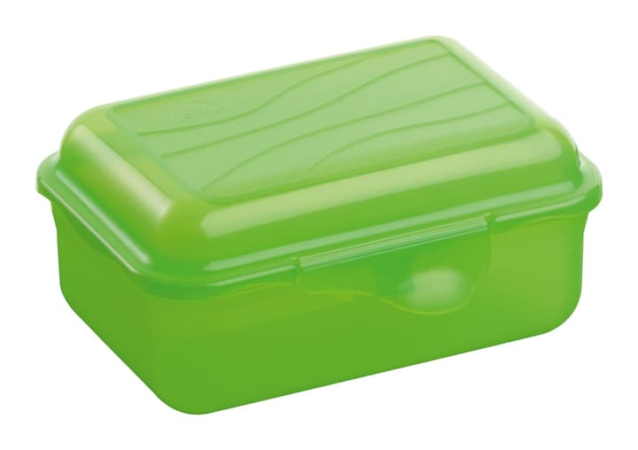 M-TOPLINE Clic Clac Box M-Topline 702935800060 Couleur Vert Dimensions L: 9.0 cm x P: 6.0 cm x H:  Photo no. 1