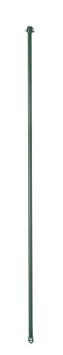 Tuteurs universel vert 636601900000 Couleur Revêtement vert Taille H: 125.0 cm Photo no. 1