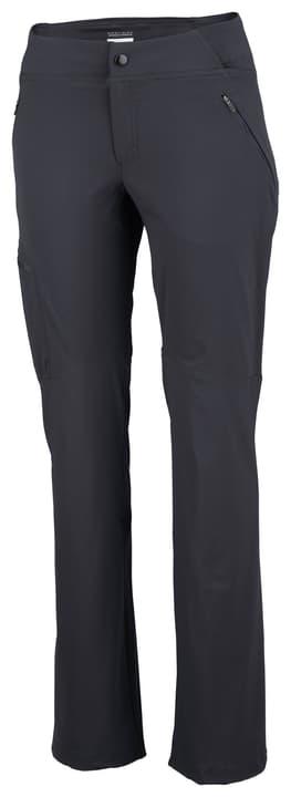 Passo Alto Pantalon de trekking pour femme Columbia 473187800280 Couleur gris Taille XS Photo no. 1