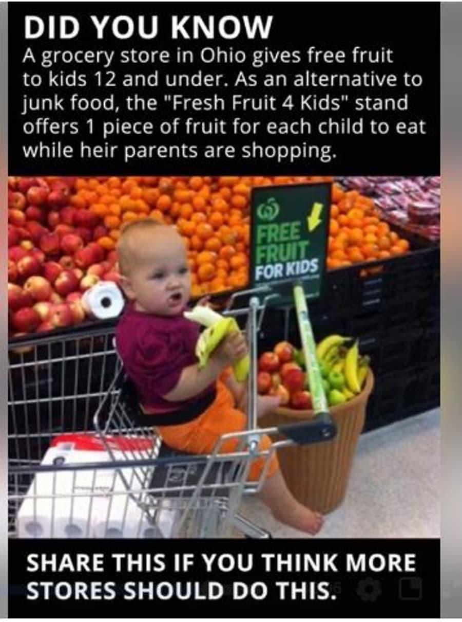 Fresh Fruit for Kids.JPG