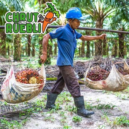 Palmöl-Podcast-4-Arbeiter-2.jpg