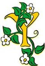yellow55