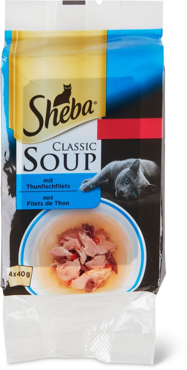 Soup mit Thunfischfilets