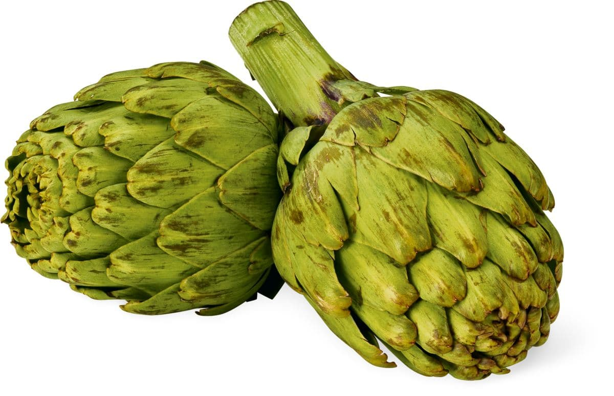 cardapio para ganho de massa muscular magra folheto sobre alimentao saudavel