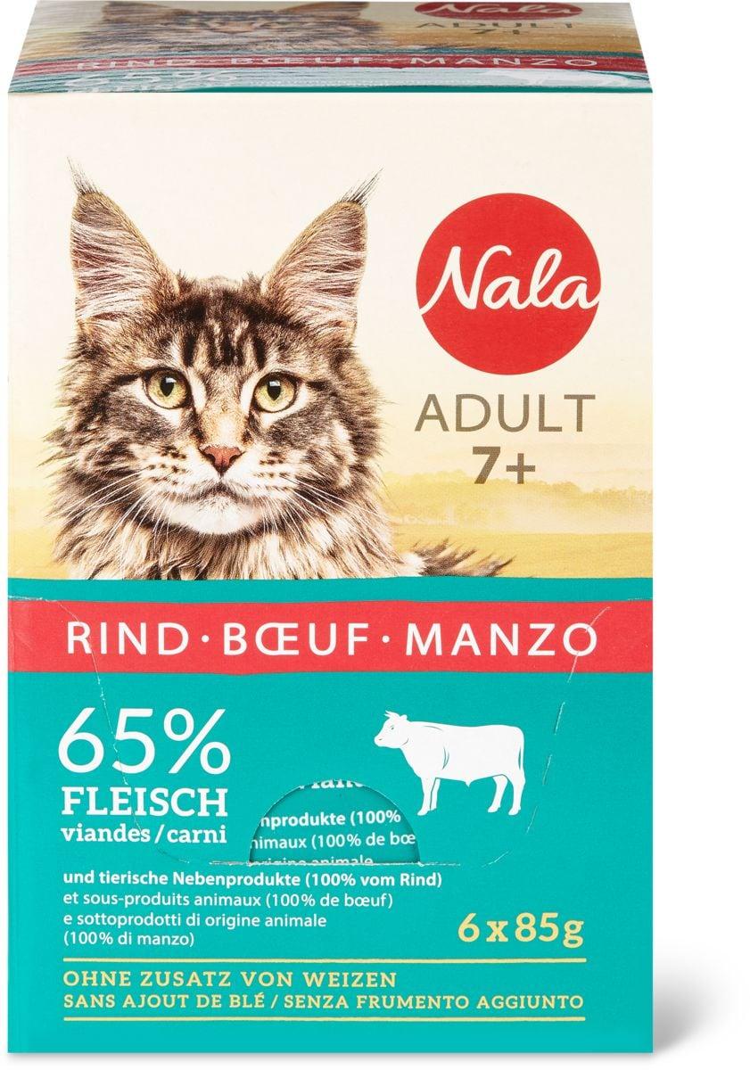 Nala Adult 7+ Rind
