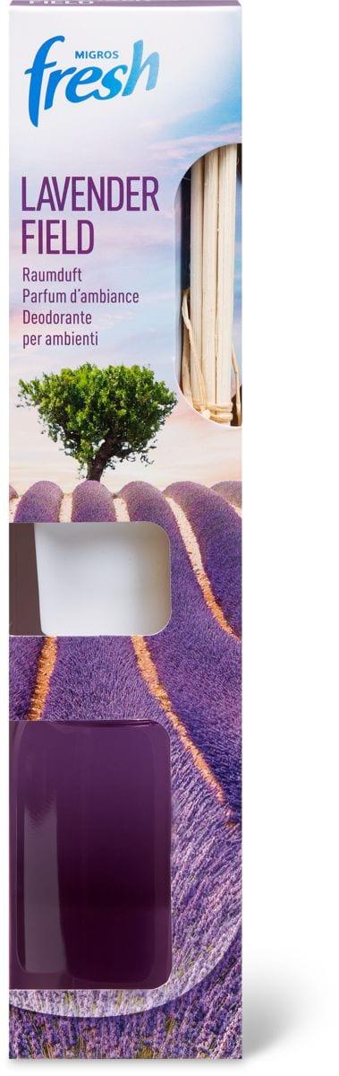 M-Fresh Lavender Field