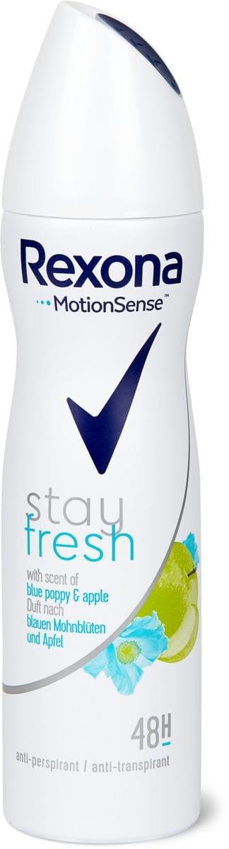 Rexona Deo Spray Stay Fresh