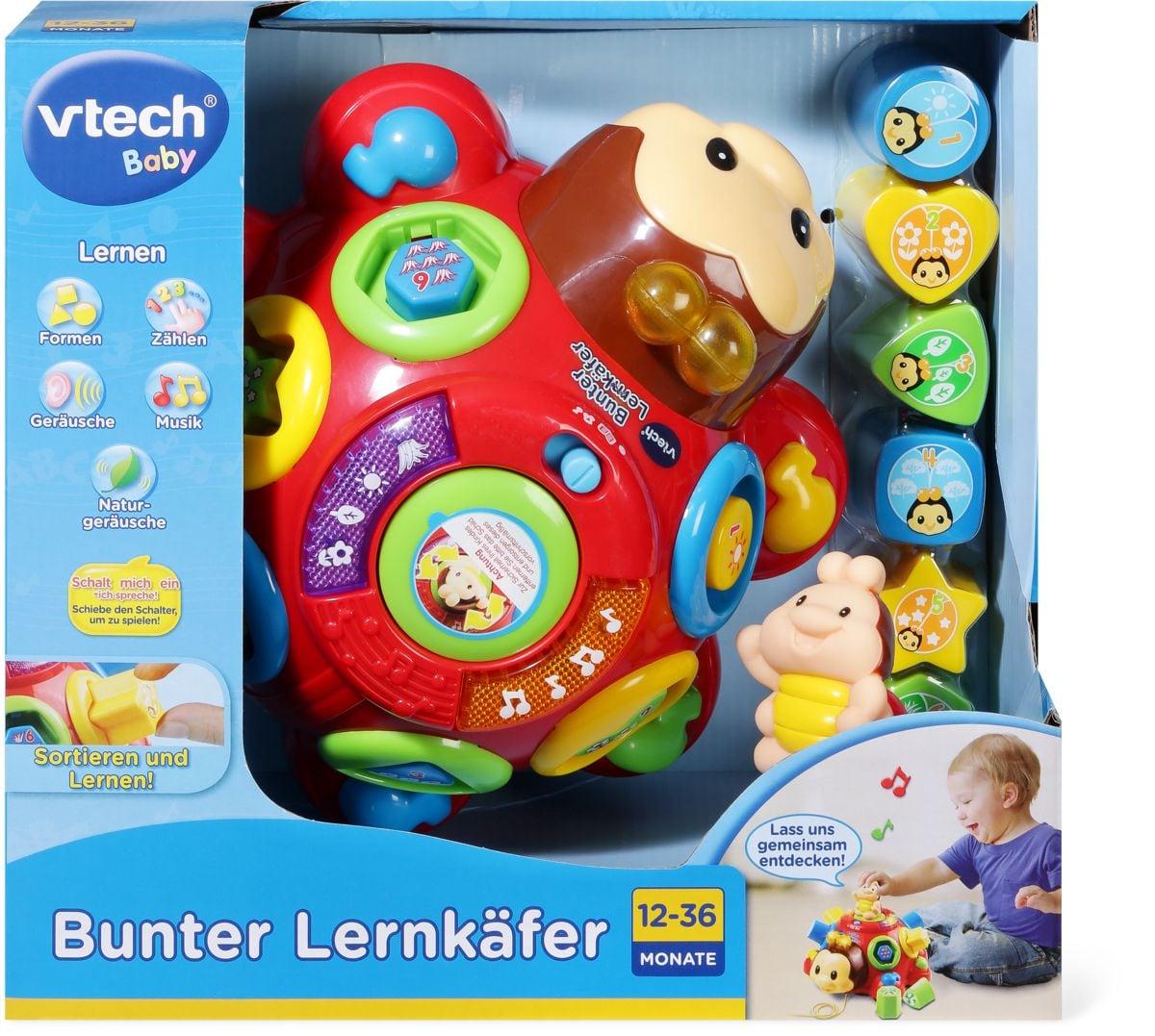 Bunter Lernkäfer (D)