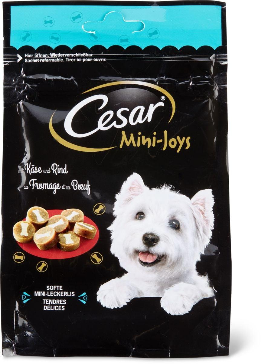 Cesar Mini-Joys Frommage & bouef