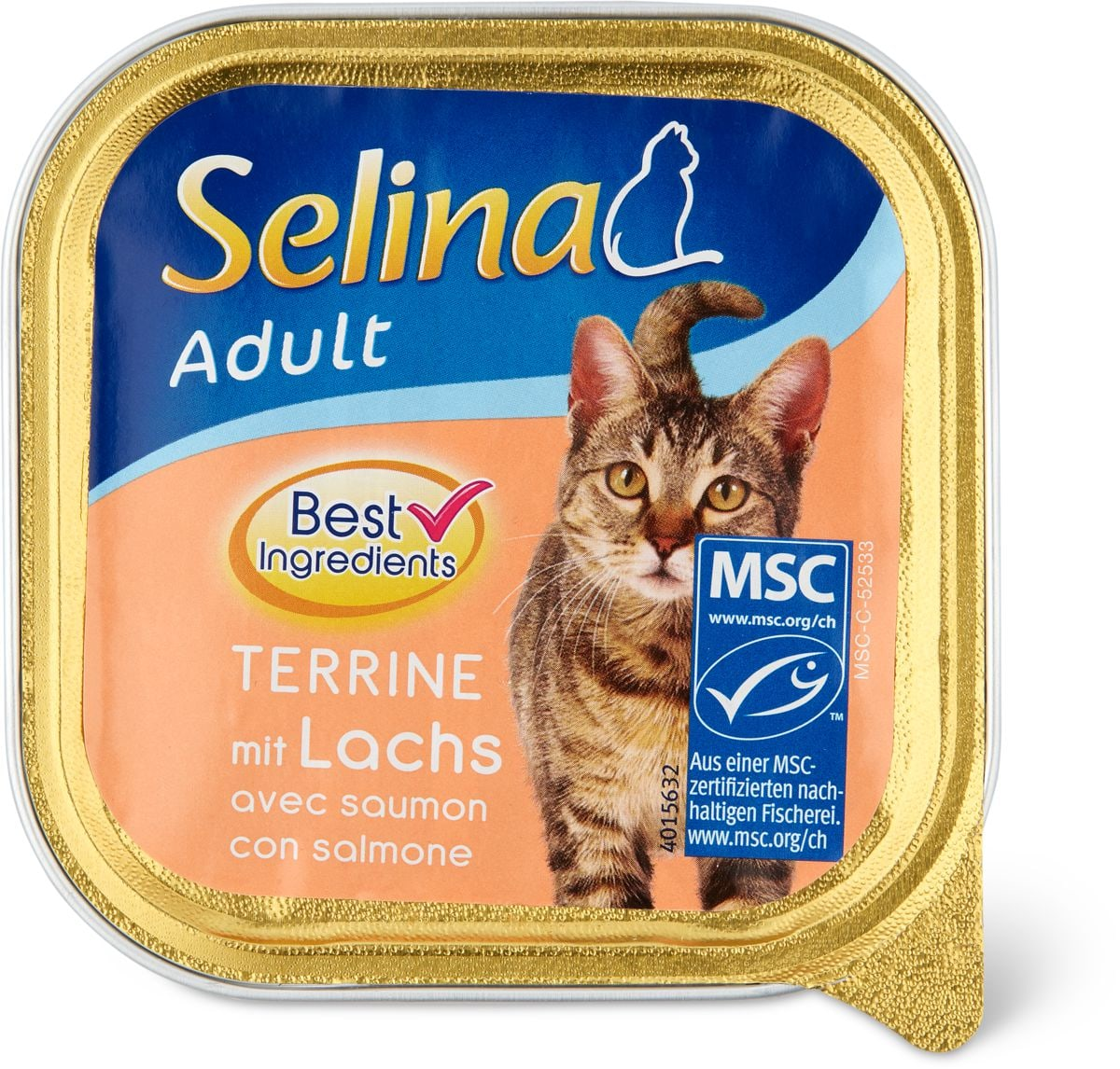 Selina MSC adult Terrine salmone