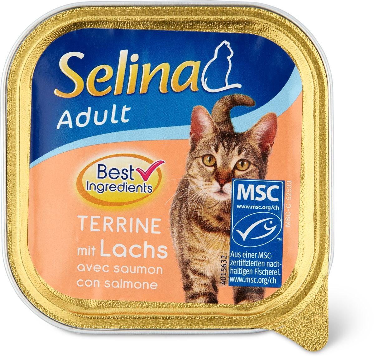 Selina MSC adult Terrine salmone