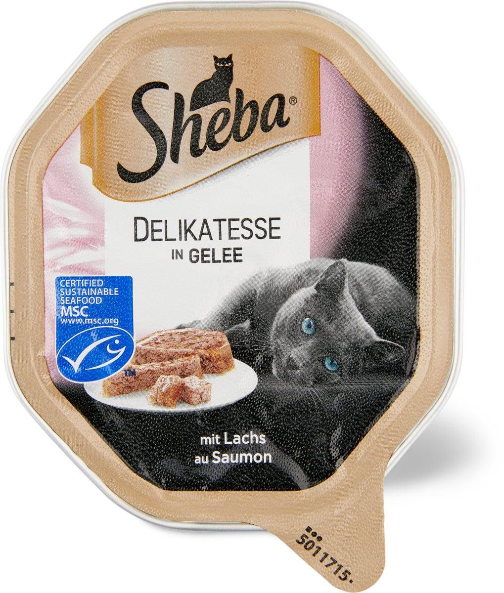 Sheba MSC délicat. en gelée avec saumon