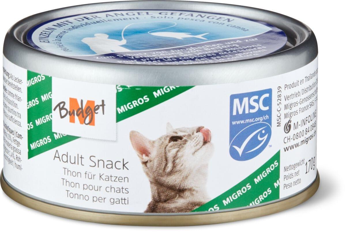 MSC adult Thon pour chats