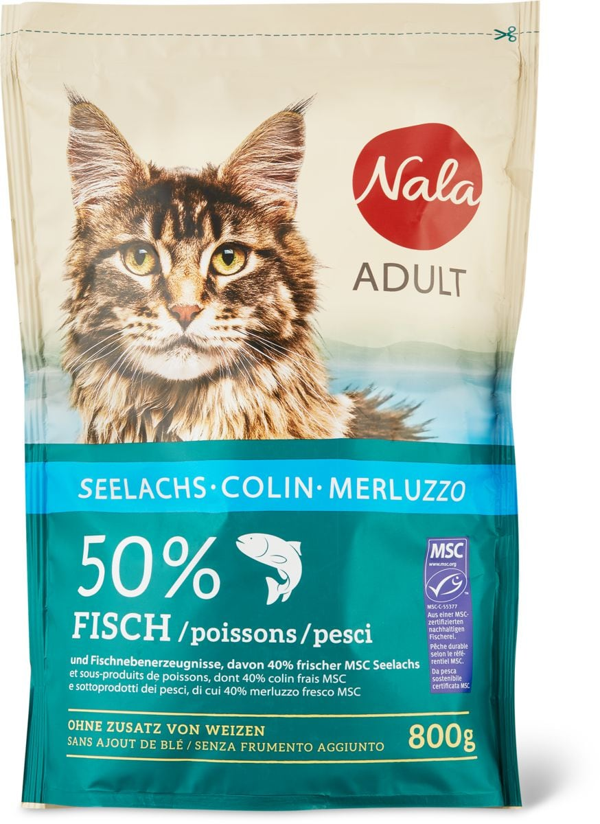 Nala Adult MSC Colin