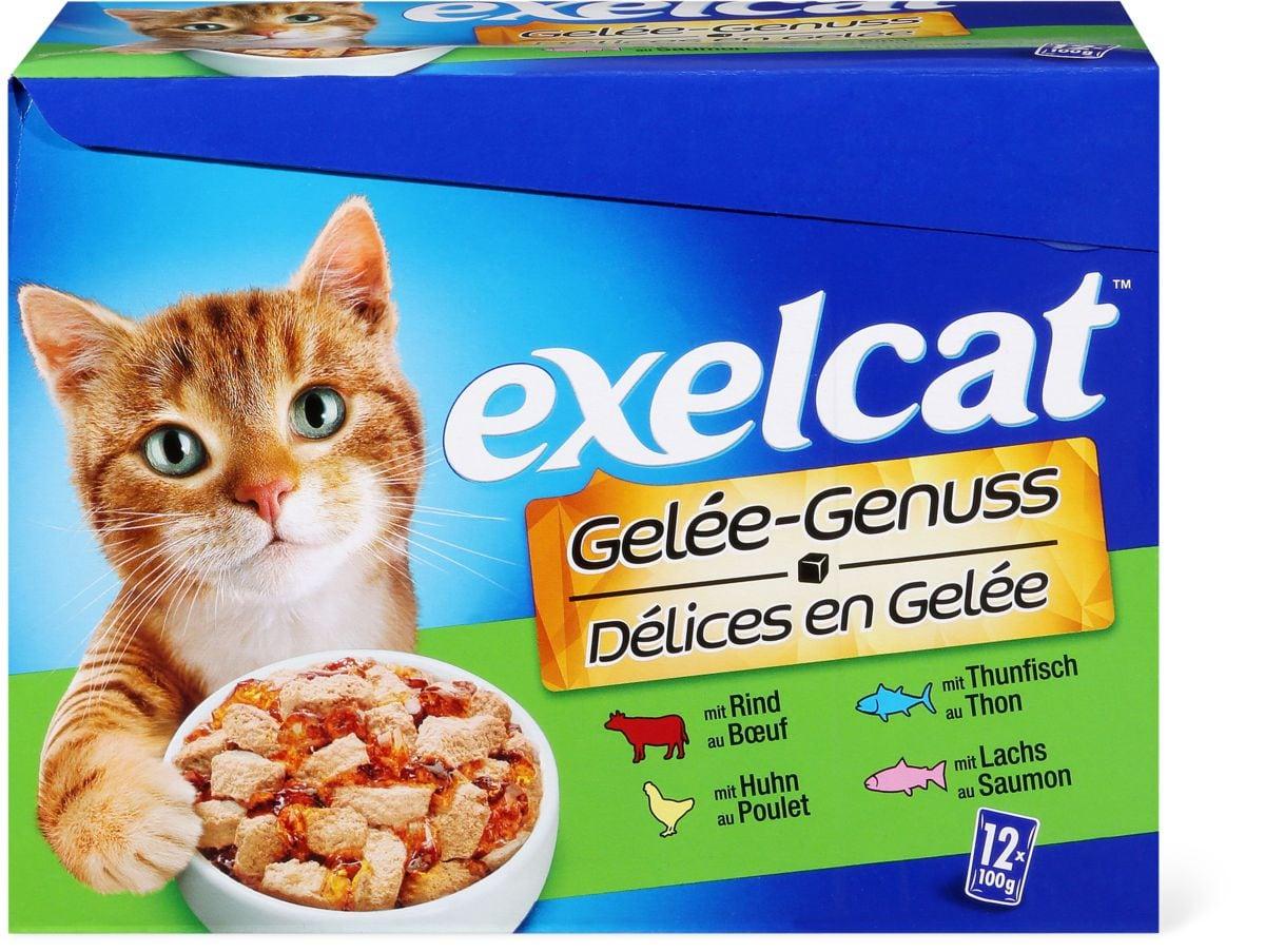 Exelcat Multipack en Gelée
