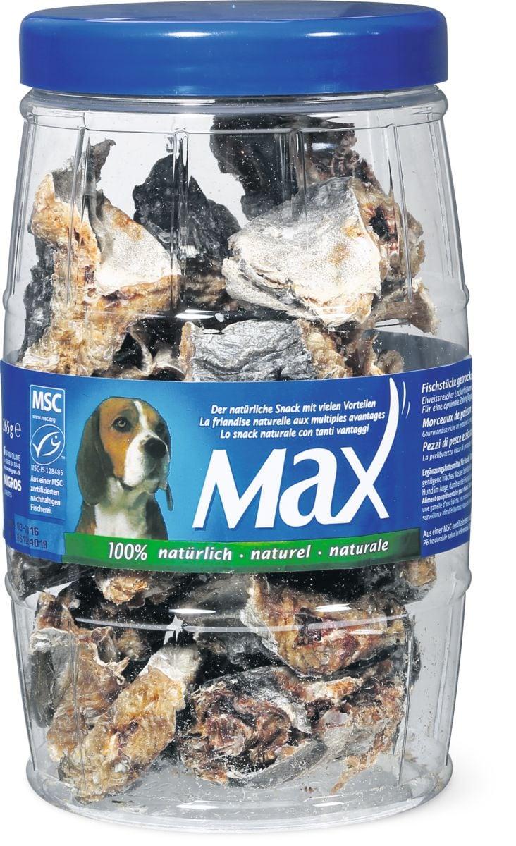 Max MSC Pezzi di pesce