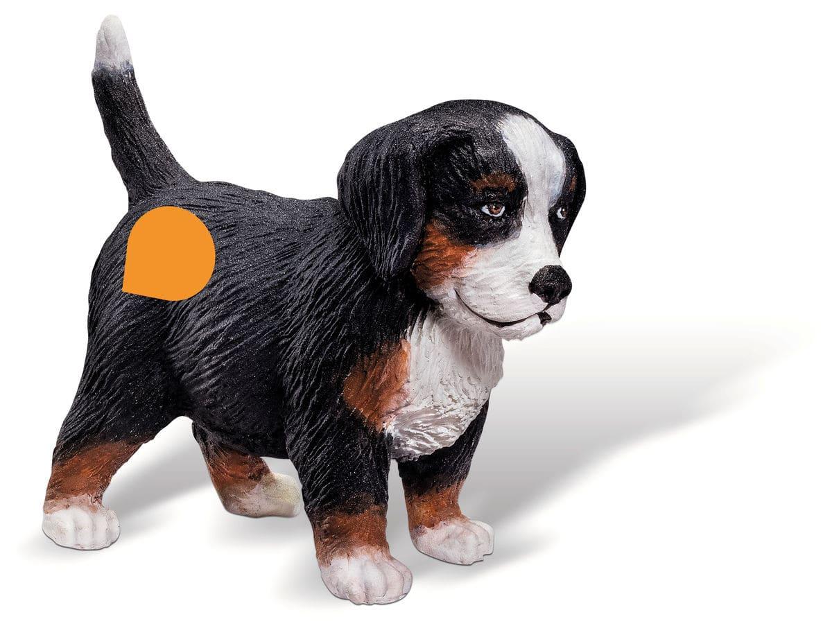 Tiptoi Berner Sennenhund Welpe (D)
