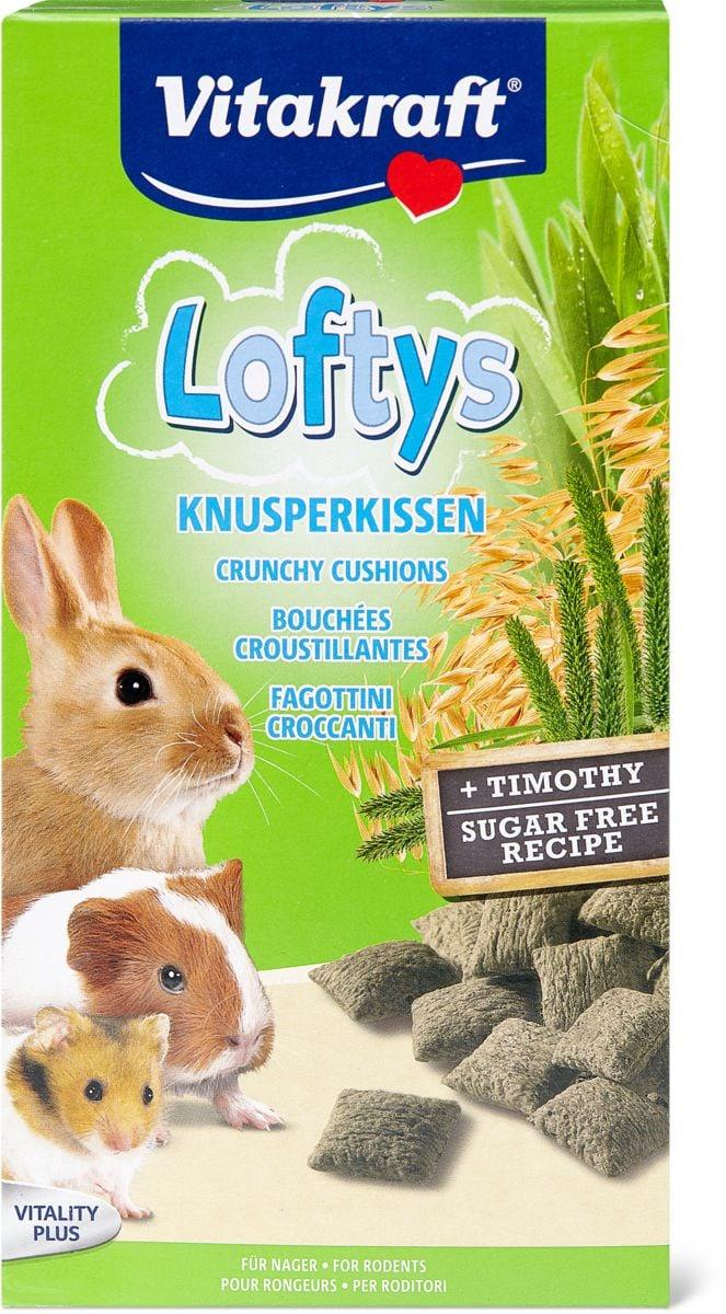 Loftys Rongeurs
