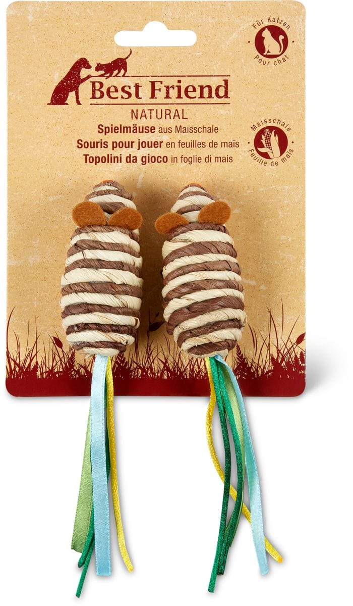 Spielmäuse aus Maisschale