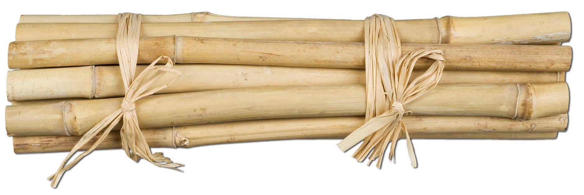 Do it + Garden bambou 15 barres