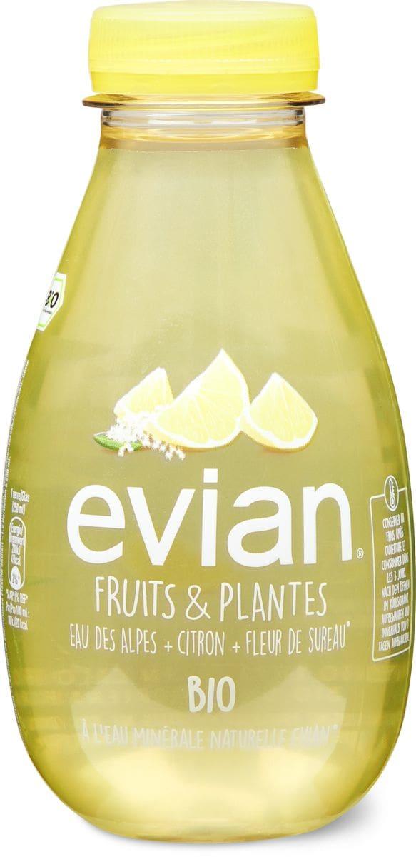 Evian F&P Zitrone-Holunderblüte