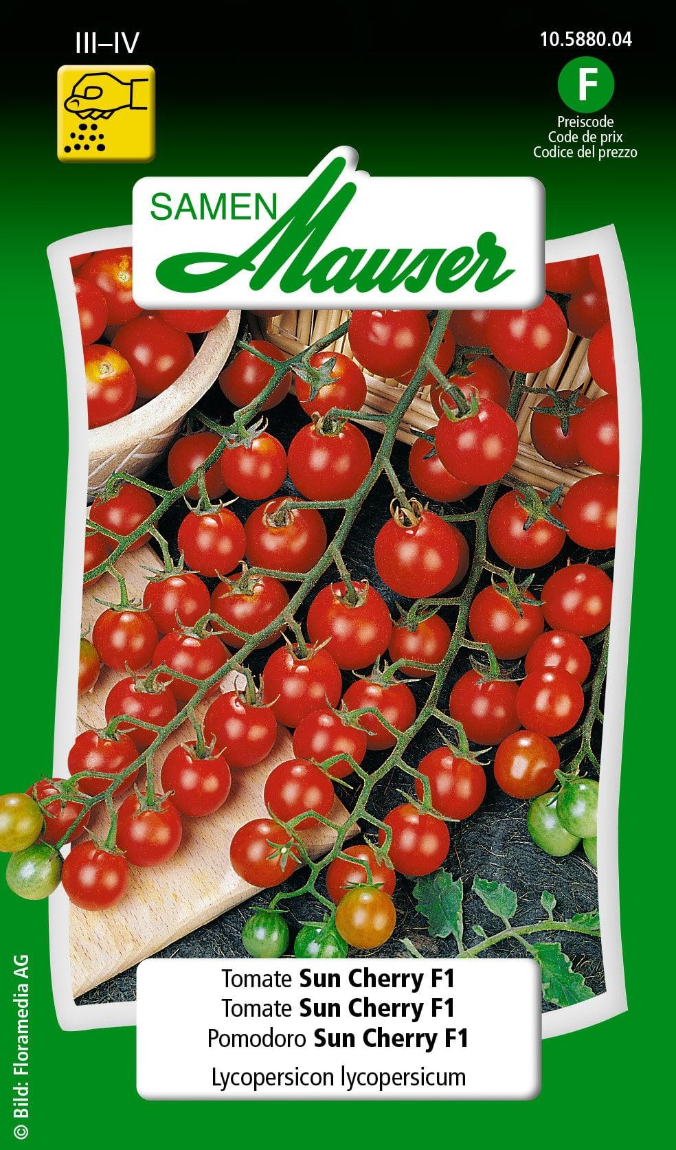 Samen mauser pomodoro sun cherry f1 migipedia - Terriccio fertile ...