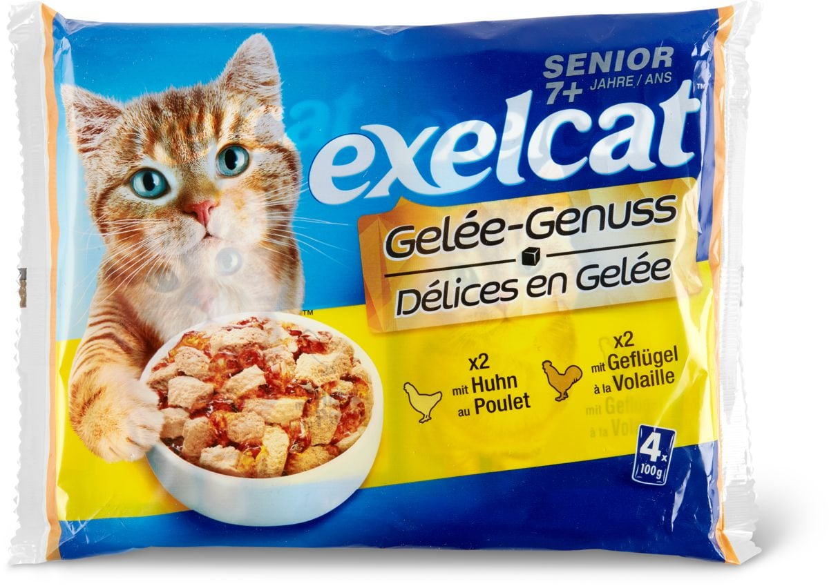 Exelcat gelée Senior volaille