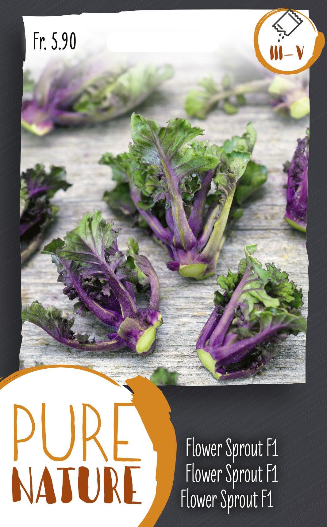 Do it + Garden Flower Sprout 10 Korn Semences de legumes