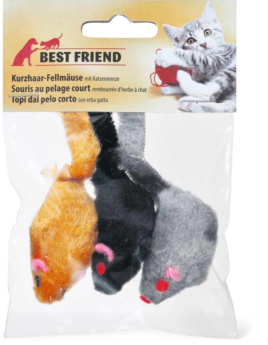 Souris au pelage court pour chats