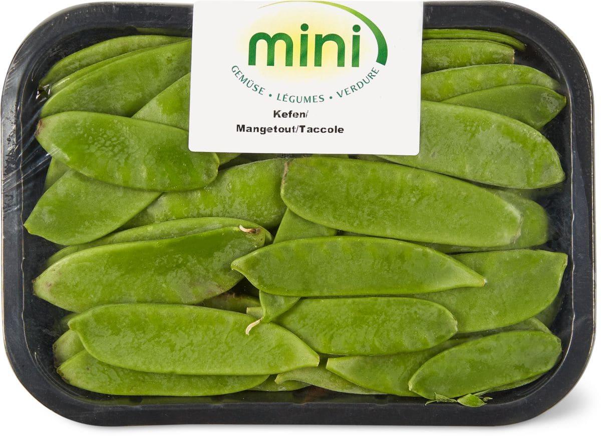 Mini Kühlschrank Migros : Kefen mini migipedia