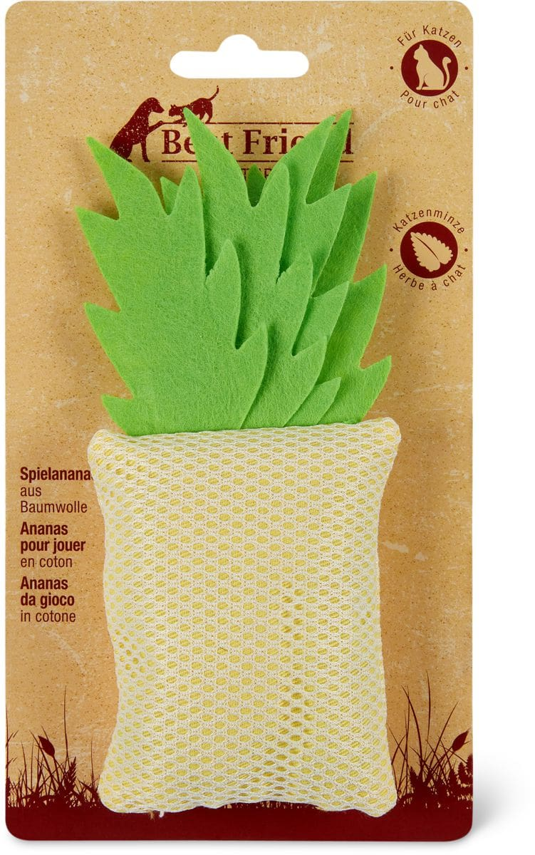 Ananas pour jouer Natural