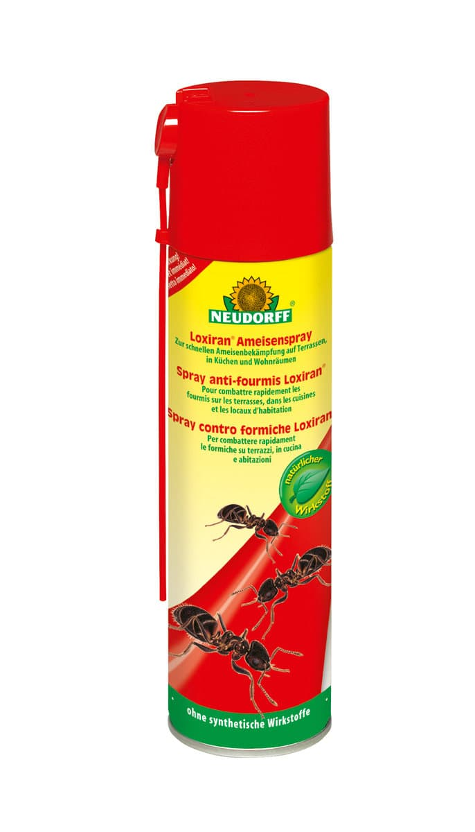 Neudorff spray anti fourmis loxiran 200 ml migros - Produit anti fourmis ...