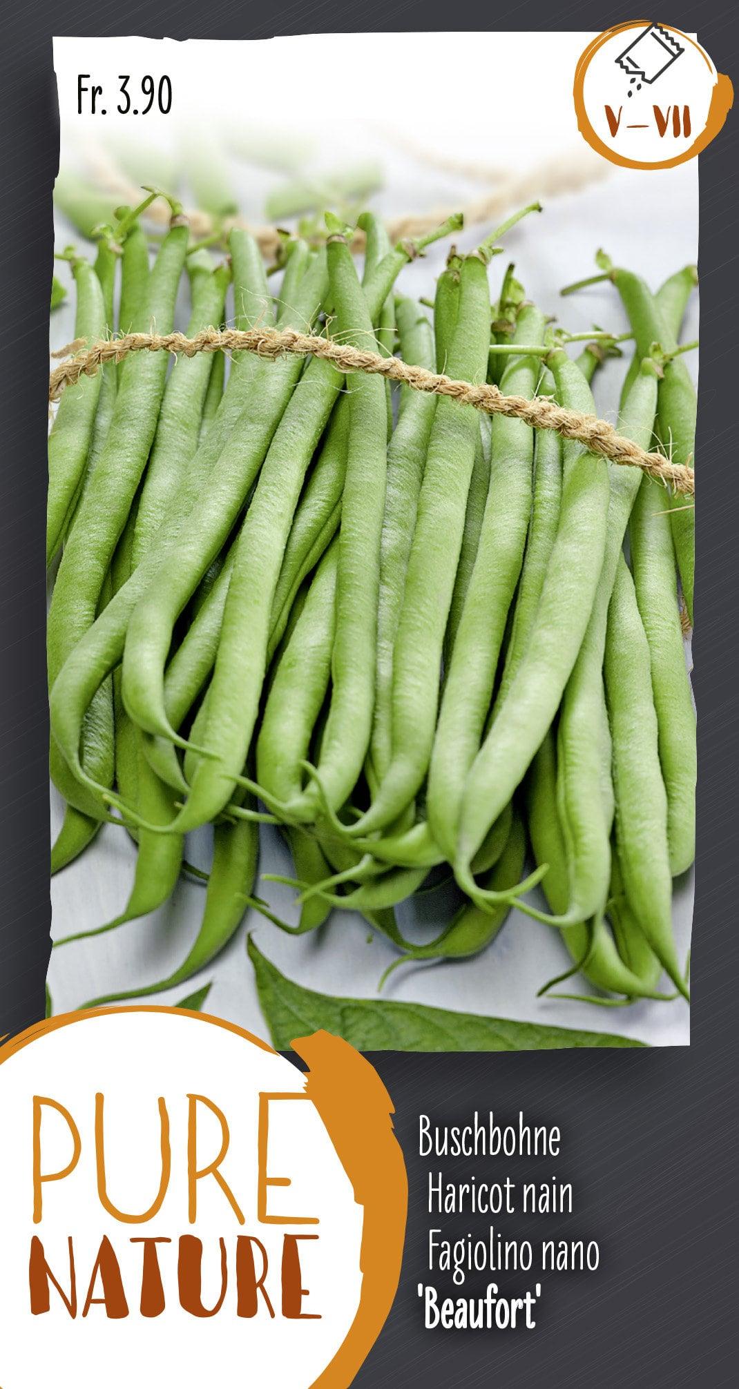 Do it + Garden Haricot nanie 'Beaufort' (Odessa) 60g Semences de legumes