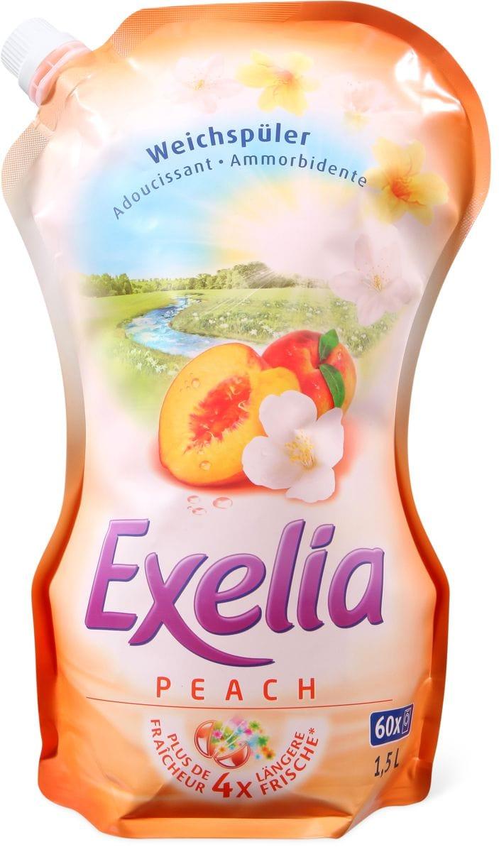 Exelia Peach