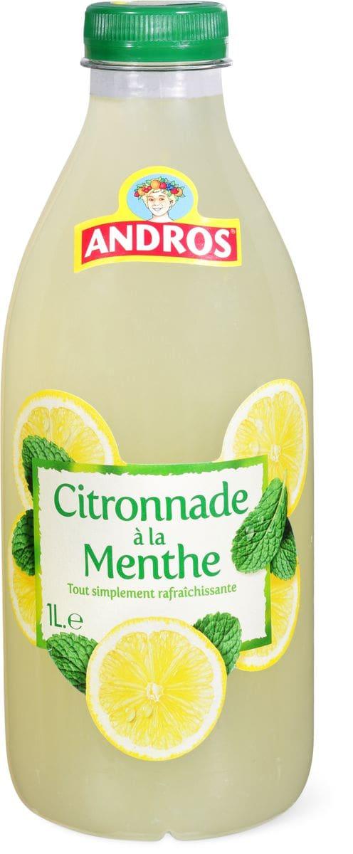 Andros Citronnade à la menthe