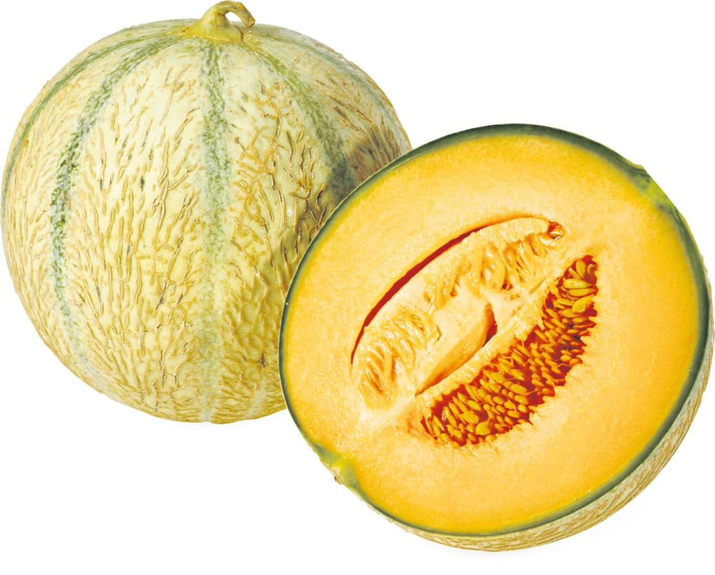 Melon charentais migros - Culture du melon charentais ...
