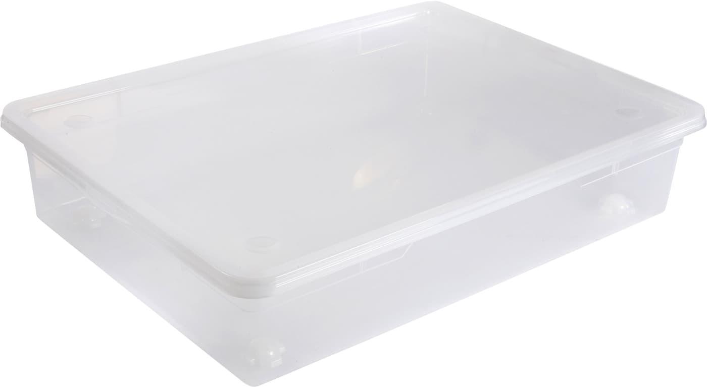 rotho clear box mega unterbettbox migros. Black Bedroom Furniture Sets. Home Design Ideas