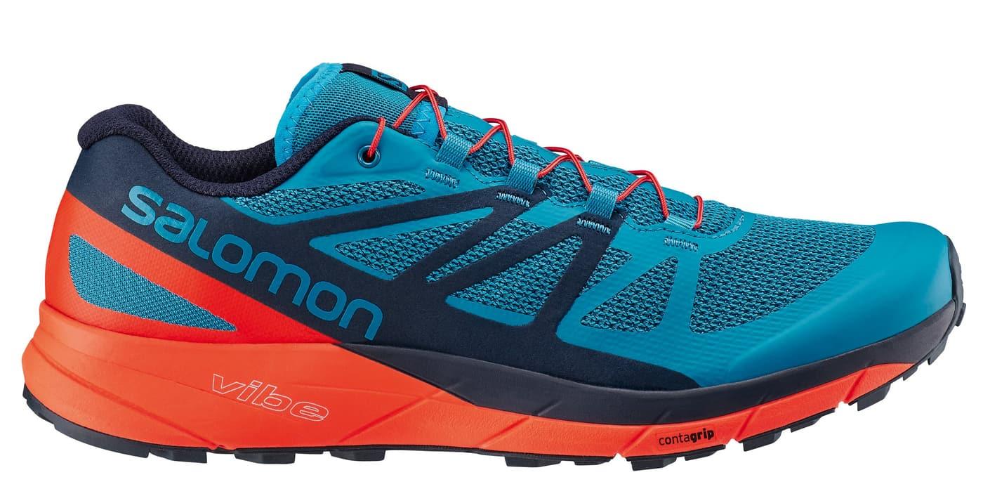 énorme réduction 43538 10bfb Salomon Sense Ride Chaussures de course pour homme