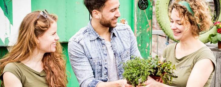 Urban Farming avec Do it + Garden Migros