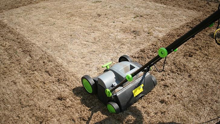 Blog: Erste Hilfe gegen Hitzeschäden am Rasen