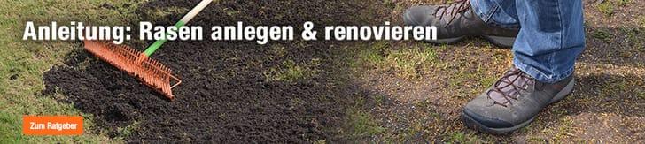 Rasen anlegen & renovieren