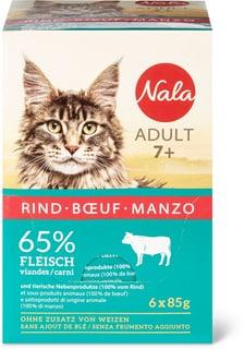 Adult 7+ Manzo