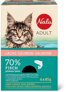 Adult Lachs