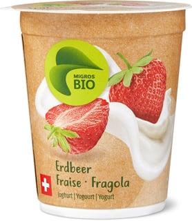 Bio Joghurt Erdbeer