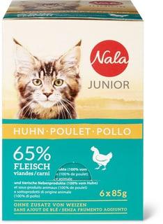 Junior Pollo